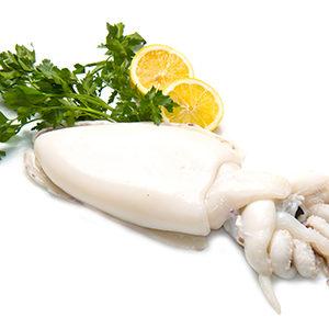 Calamar limpio